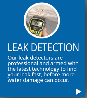 services-leak-detection