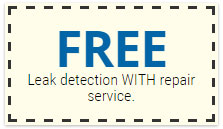 free-leak-detection-with-repair